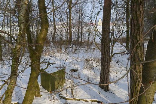 2011 02 22 06 Veselíčko ves (2).JPG (normální)
